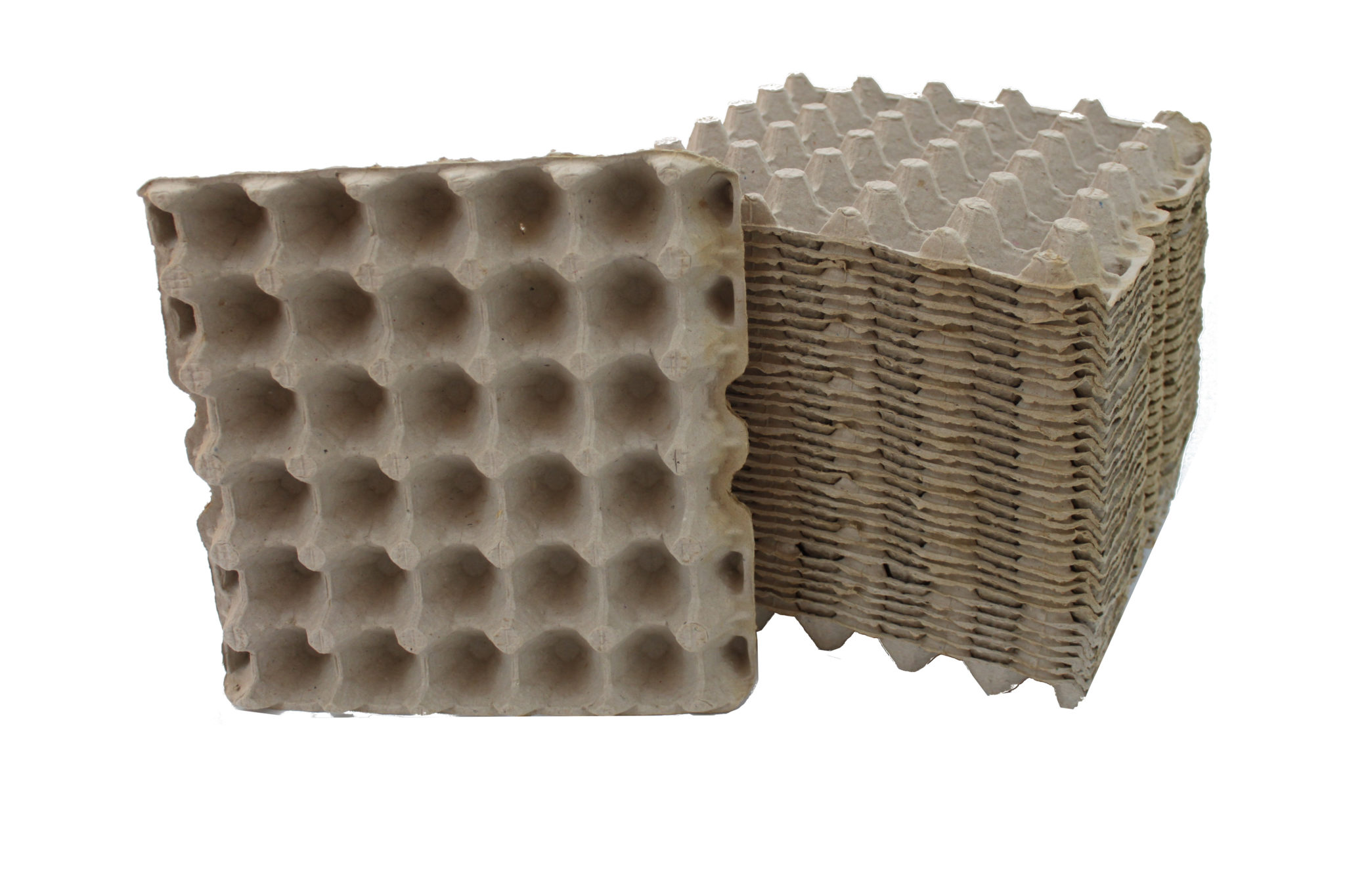Egg Crates For Feeders Groveland Gecko